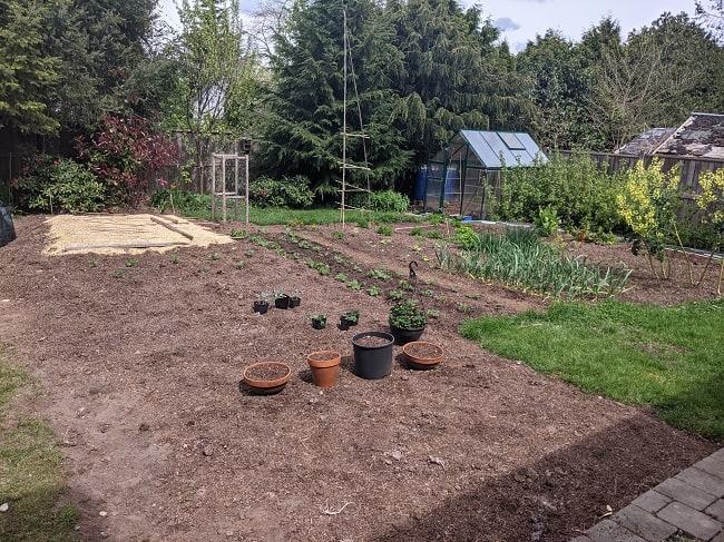 Tawcan backyard garden